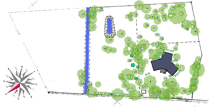 Drzewa na mapie